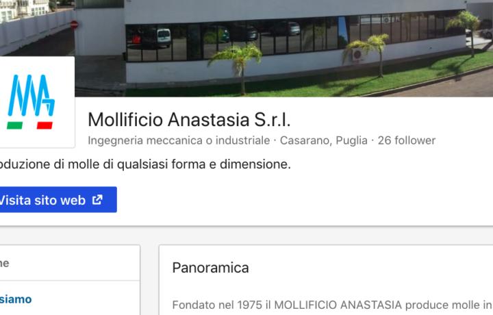 linkedin-mollificio-anastasia